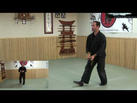 Ninjutsu - Throwing Knives - Ninja Training Free Videos - Ninjutsu weapons Image 1