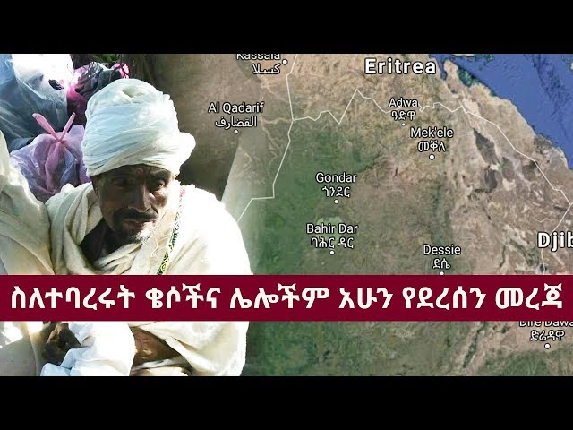 Voice of Amhara Daily Ethiopian News May 5, 2018