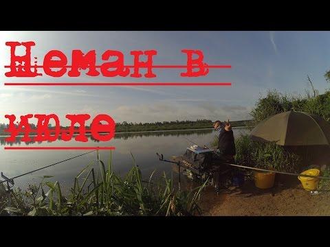 рыбалка на немане 2017