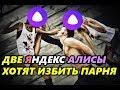 Две Яндекс Алисы хотят избить парня! :D