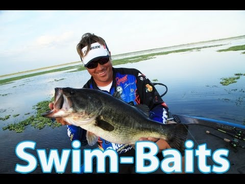 How to rig swimbaits properly for giant bass! Picking the right rod, line and bait - Scott Martin