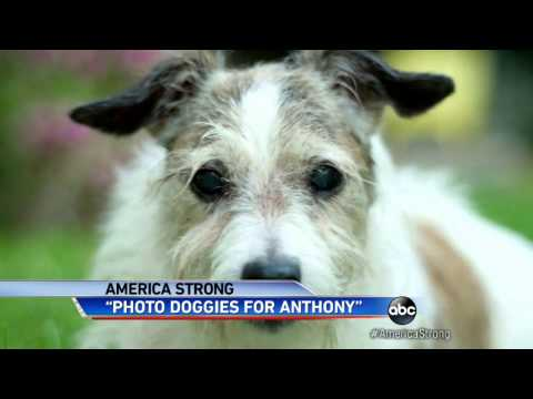 'Photo Doggies for Anthony' Give Hope to Boy With Leukemia