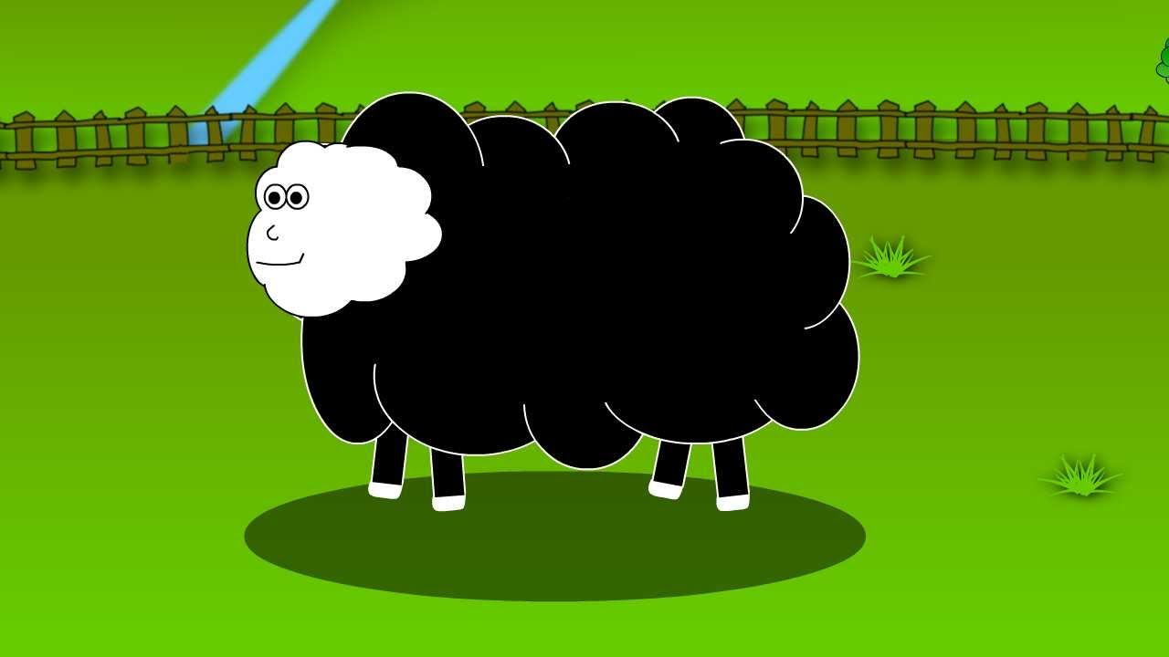 Baa baa black sheep pictures