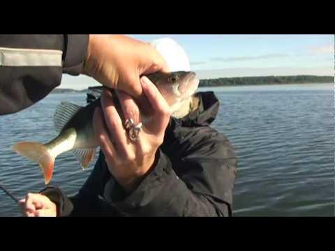 рыбалка на истре весной
