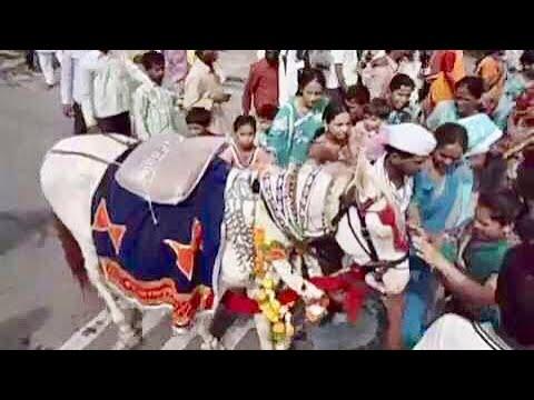 Ringan Ashwa Darshan ► Sant Dnyaneshwar Maharaj Palakhi Sohola 2014 video