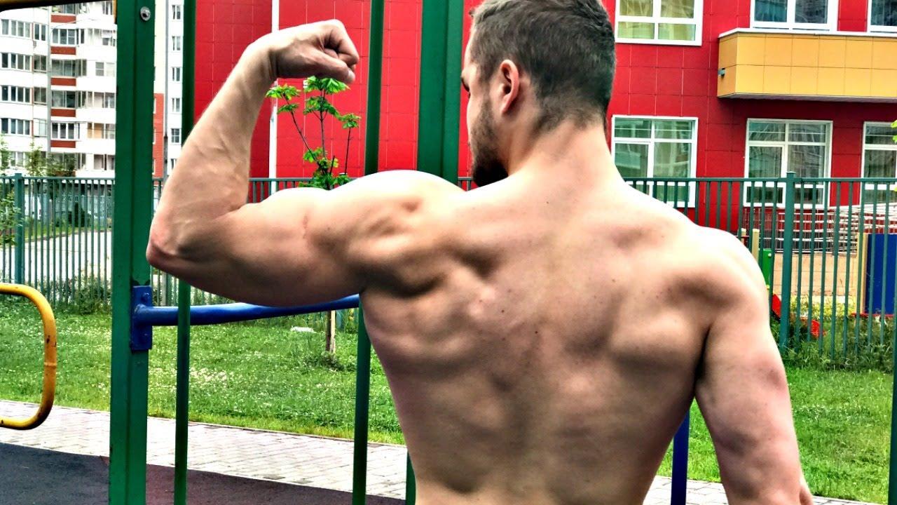 территорий тренировки на массу спины дадут