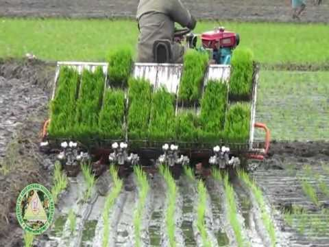 Mechanization of Rice Production- Kannada(Part1) .VOB