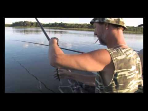 Буква Т в словаре рыбака