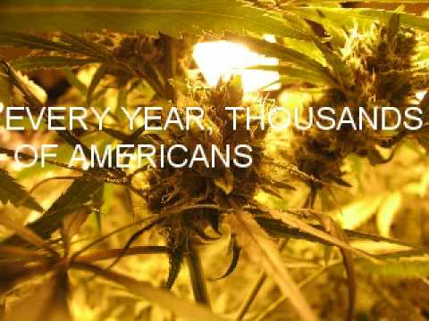 The War On Drugs - The Chronic Video