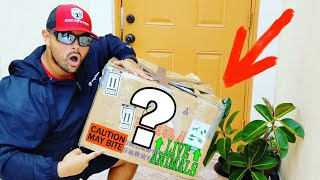 Mystery Fish Box Door Delivery Prank!