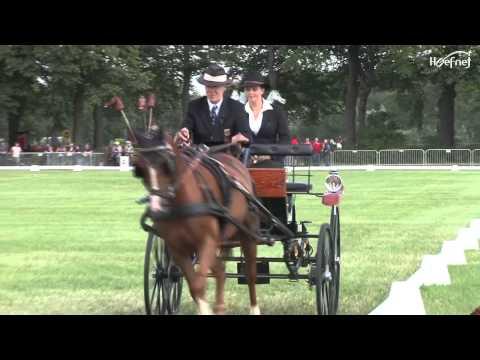 Dressage Para Equestrian  Outdoor Brabant Breda 2012