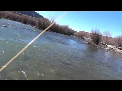 San Juan River New Braids Fly Fishing Report Feb 2012