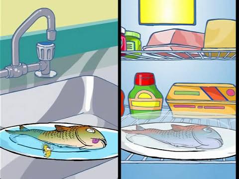 Cuatro normas para garantizar la seguridad de los alimentos que preparemos