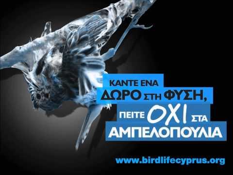 Cyprus bird trapping - BirdLife Cyprus' radio spot on the