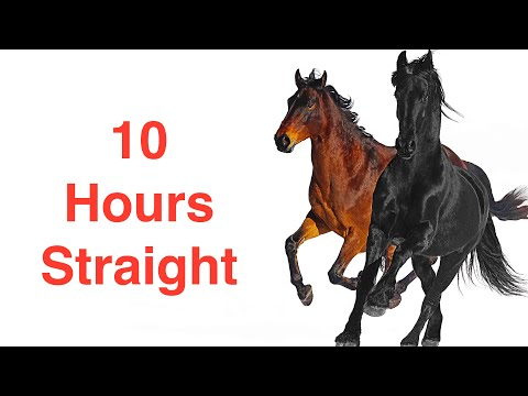Lil Nas X, Billy Ray Cyrus - Old Town Road  10 Hours