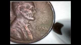 Coin Collection 21 1955 Poor Man DDO