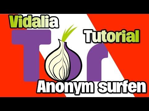 Anonym surfen mit Tor (Vidalia)