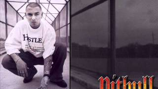 Watch Pitbull All 4 Sale video
