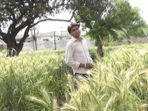 Ahmad Wasim okara darwaze pe tere barat laye ga