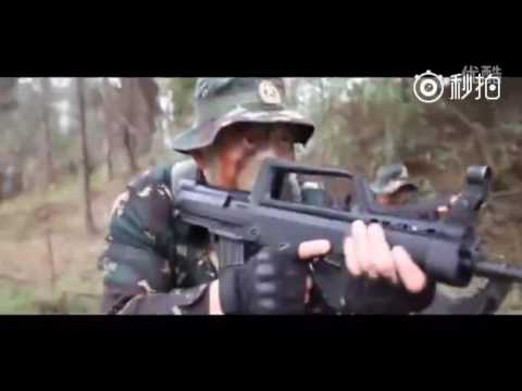 中国人民解放军【the Chinese People's Liberation Army】