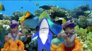 Baby Shark Dance | Animal Songs for Children | Nursery Rhymes Songs