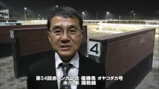 20170524赤レンガ記念 米川昇調教師