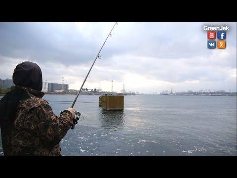 ловля рыбы в евпатории