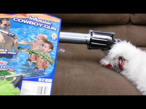 Inflateable Cowboy Gun - Banzai's Worst Inflateable Handgun for Pool Fun!   2 Furries On A Couch
