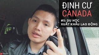 🇨🇦Định cư Canada #5: Du học & Xuất khẩu lao động làm sao để ở lại Canada   Quang Lê TV #140