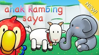 Lagu Anak Indonesia Anak Kambing Saya