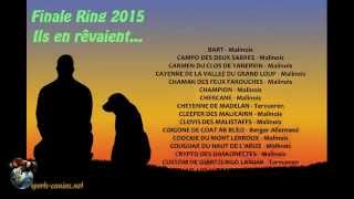 Championnat de France en Ring 2015