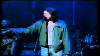 Butthole Surfers (David Letterman 1996) - Pepper