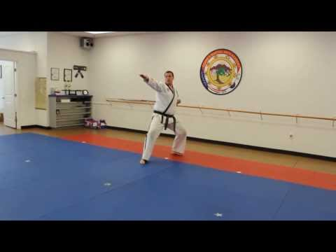 EMA White-Yellow Belt Form Slow Version