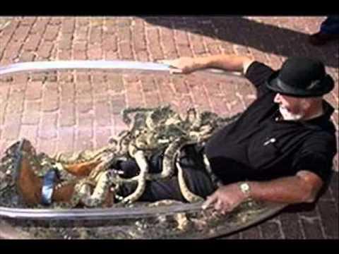 tıklanma rekoru kıran guinnes rekorları 2013