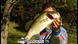 Come PESCARE il BLACK BASS a SPINNING
