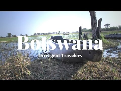 Travel Guide To Explore Botswana With The Divergent Travelers