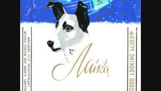 Laika - Black Cat Bone