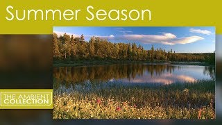 4 SEASONS DVD - RELAXING VIDEO