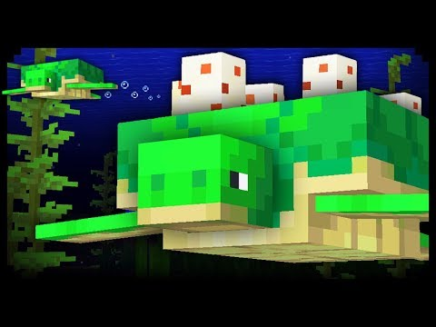 ✔ Minecraft: 20 Things You Didn't Know About Turtles