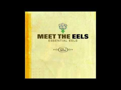 Eels - 3 Speed