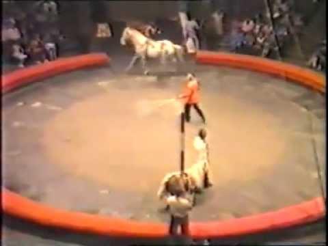 Гражданская Оборона, Егор Летов - Песня о циркаче