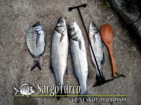 Pesca de lubina a boya & Seabass Fishing With Float...!