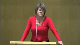 Ulla Andersson (V) bjuder på ett inte alldeles sakligt inlägg