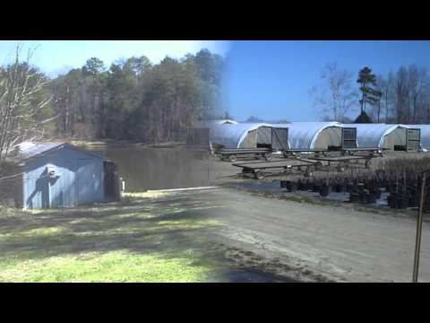 North Carolina Landscape Nursery for Sale