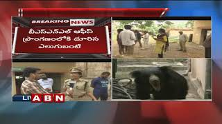 Exclusive Visuals | Bear Hulchul at Karimnagar BSNL Office | Forest Officers try to Catch the bear