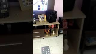 Televisão LG ligando Bluetooth para conectar no som