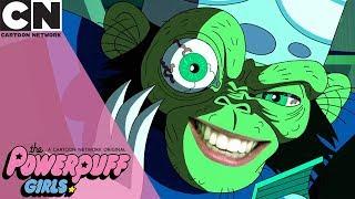 The Powerpuff Girls | Spooky Stories | Cartoon Network