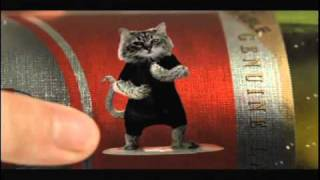 Thumb Comercial del gato surfer en la cerveza Becker