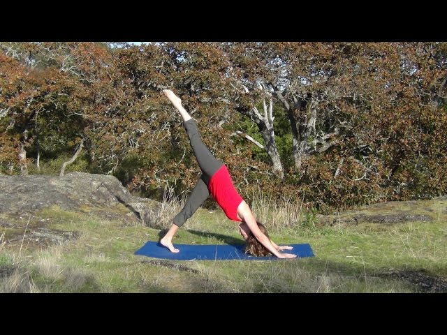 Sun Salutations I with Melissa Krieger (formerly McLeod)