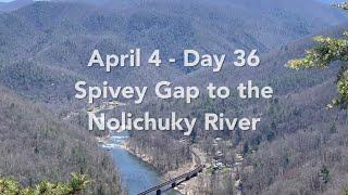 Day 36 - April 4: Spivey Gap to the Nolichicky River